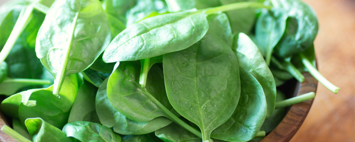 Rustic Farm to Fork-Health benefits of Spinach